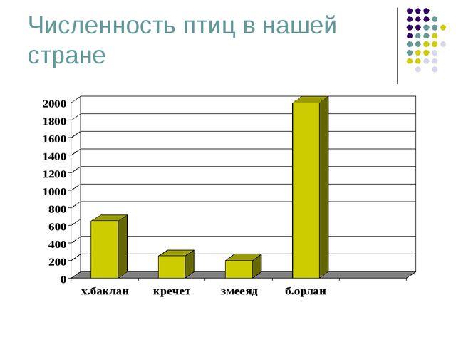 Численность птиц в нашей стране