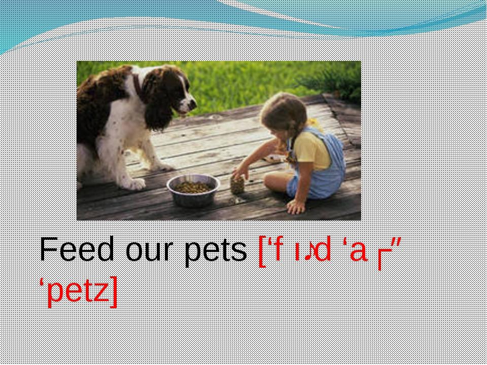 Feed our pets ['f ıːd 'aʊə 'petz]
