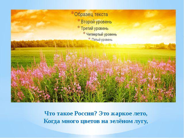 Что такое Россия? Это жаркое лето, Когда много цветов на зелёном лугу,