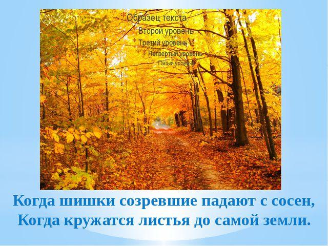Когда шишки созревшие падают с сосен, Когда кружатся листья до самой земли.