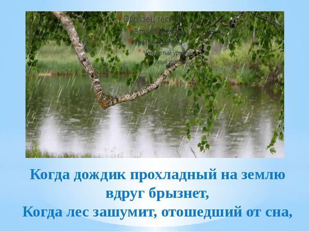 Когда дождик прохладный на землю вдруг брызнет, Когда лес зашумит, отошедший...