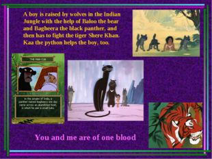 A boy is raised by wolves in the Indian Jungle with the help of Baloo the bea