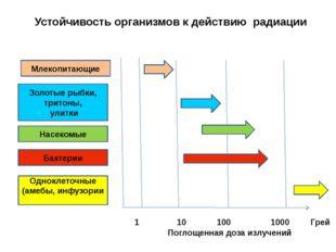 Устойчивость организмов к действию радиации 1 10 100 1000 Грей Млекопитающие