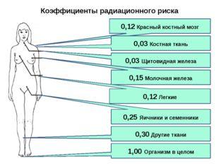 0,12 Красный костный мозг 0,03 Костная ткань 0,03 Щитовидная железа 0,15 Моло