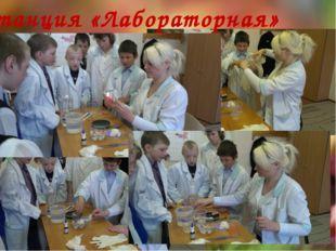 Станция «Лабораторная»