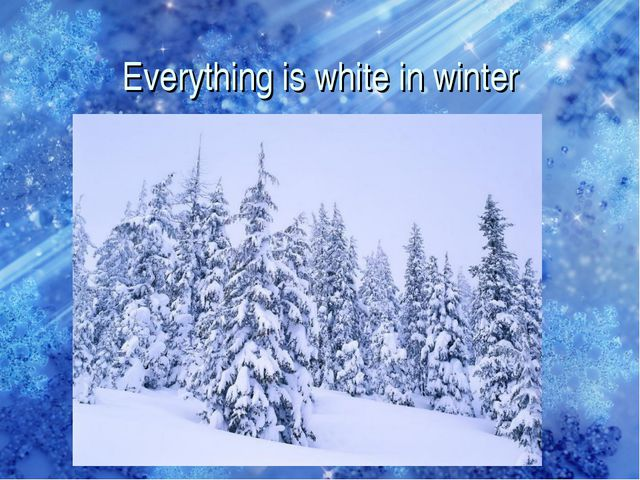 Everything is white in winter