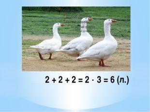 2 + 2 + 2 = 2  3 = 6 (л.)