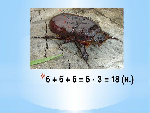 6 + 6 + 6 = 6  3 = 18 (н.)