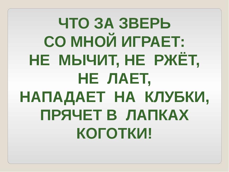 ЧТО ЗА ЗВЕРЬ СО МНОЙ ИГРАЕТ: НЕ МЫЧИТ, НЕ РЖЁТ, НЕ ЛАЕТ, НАПАДАЕТ НА КЛУБКИ,...