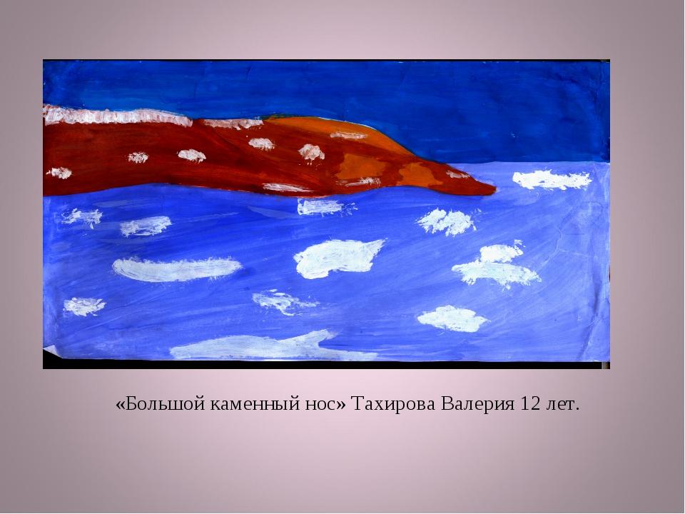 «Большой каменный нос» Тахирова Валерия 12 лет.
