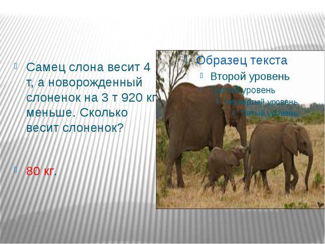 Самец слона весит 4 т, а новорожденный слоненок на 3 т 920 кг меньше. Сколько...