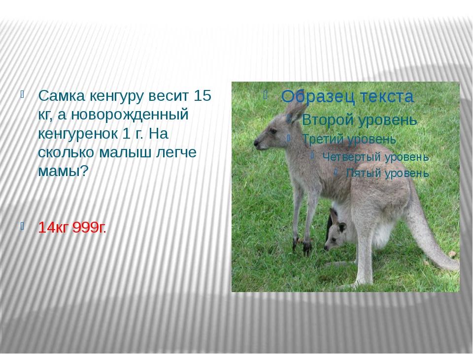 Самка кенгуру весит 15 кг, а новорожденный кенгуренок 1 г. На сколько малыш л...