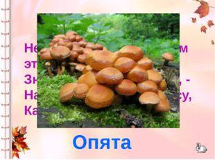 Нет грибов дружней, чем эти, - Знают взрослые и дети, - На пеньках растут в л