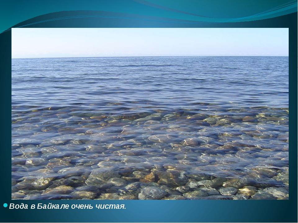 Вода в Байкале очень чистая.