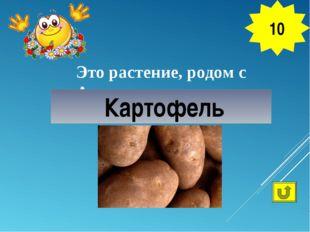 Это растение, родом с Америки, называется «вторым хлебом» Картофель 10