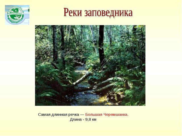 Самая длинная речка — Большая Черемшанка. Длина - 9,8 км