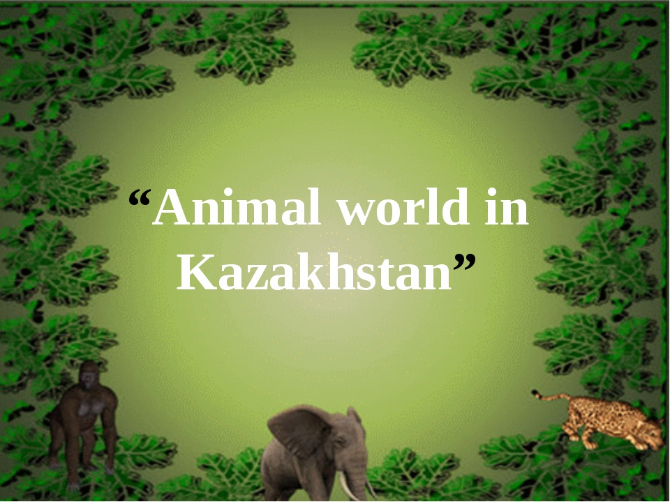 """Animal world in Kazakhstan"""