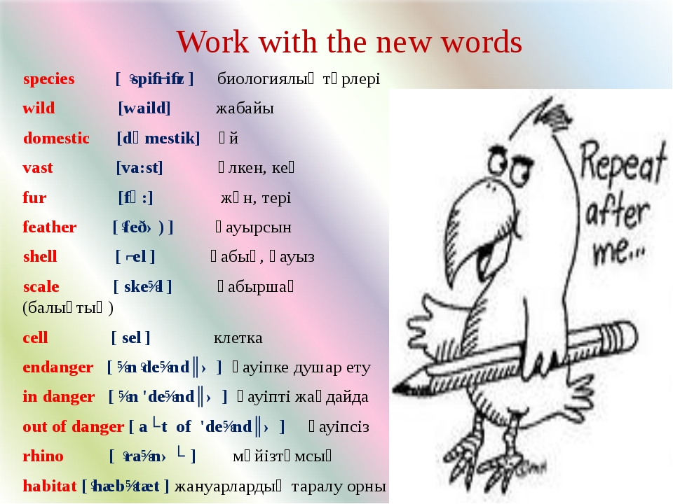 Work with the new words species [ ˈspiːʃiːz ] биологиялық түрлері wild [waild...