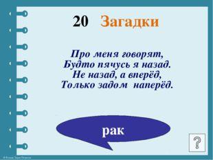 Кот в мешке Литература © Фокина Лидия Петровна