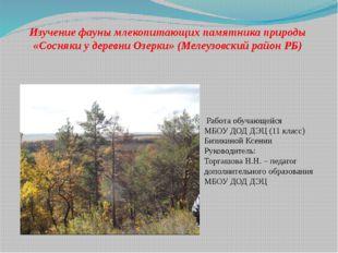 Изучение фауны млекопитающих памятника природы «Сосняки у деревни Озерки» (Ме