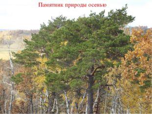 Памятник природы осенью