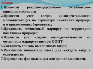 Задачи: Провести рекогносцировочное ботаническое описание местности Провести