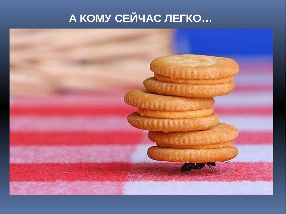 А КОМУ СЕЙЧАС ЛЕГКО…