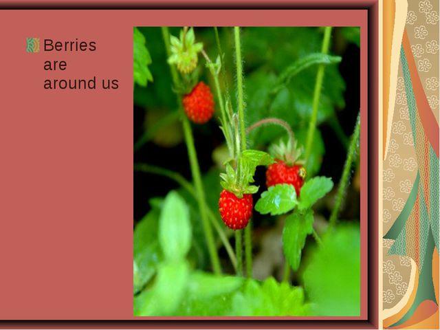 Berries are around us