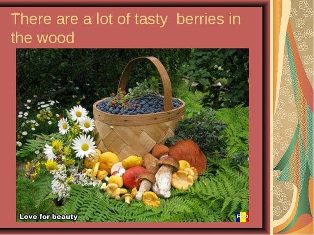 There are a lot of tasty berries in the wood
