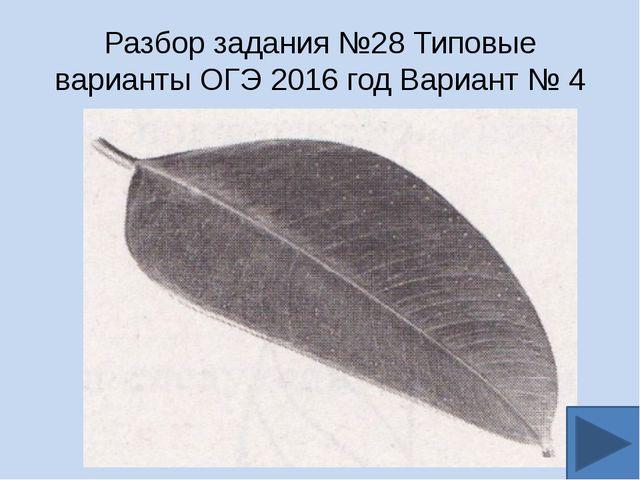 Разбор задания №28 Типовые варианты ОГЭ 2016 год Вариант № 4