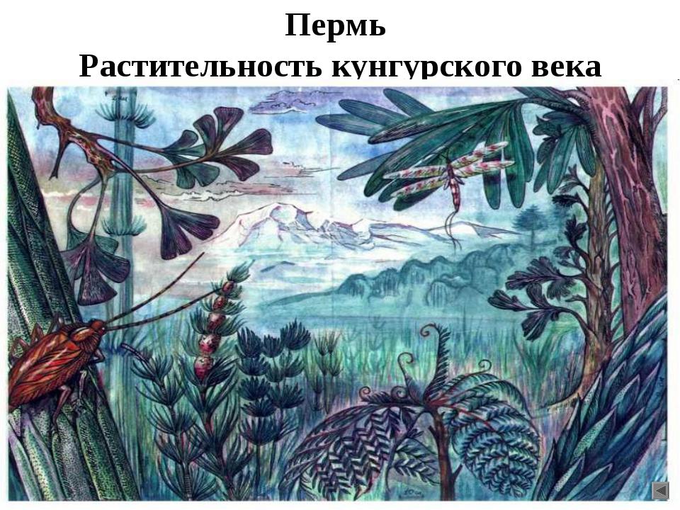 Пермь Растительность кунгурского века