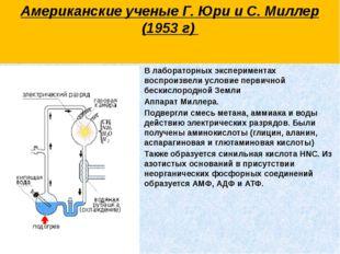В лабораторных экспериментах воспроизвели условие первичной бескислородной Зе