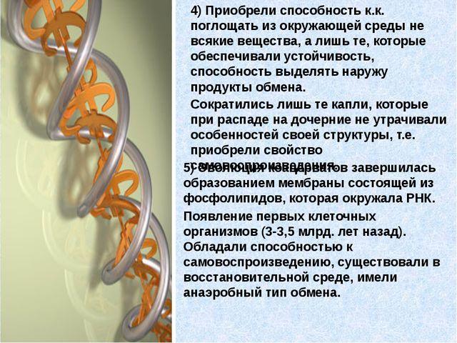 5) Эволюция коацерватов завершилась образованием мембраны состоящей из фосфол...