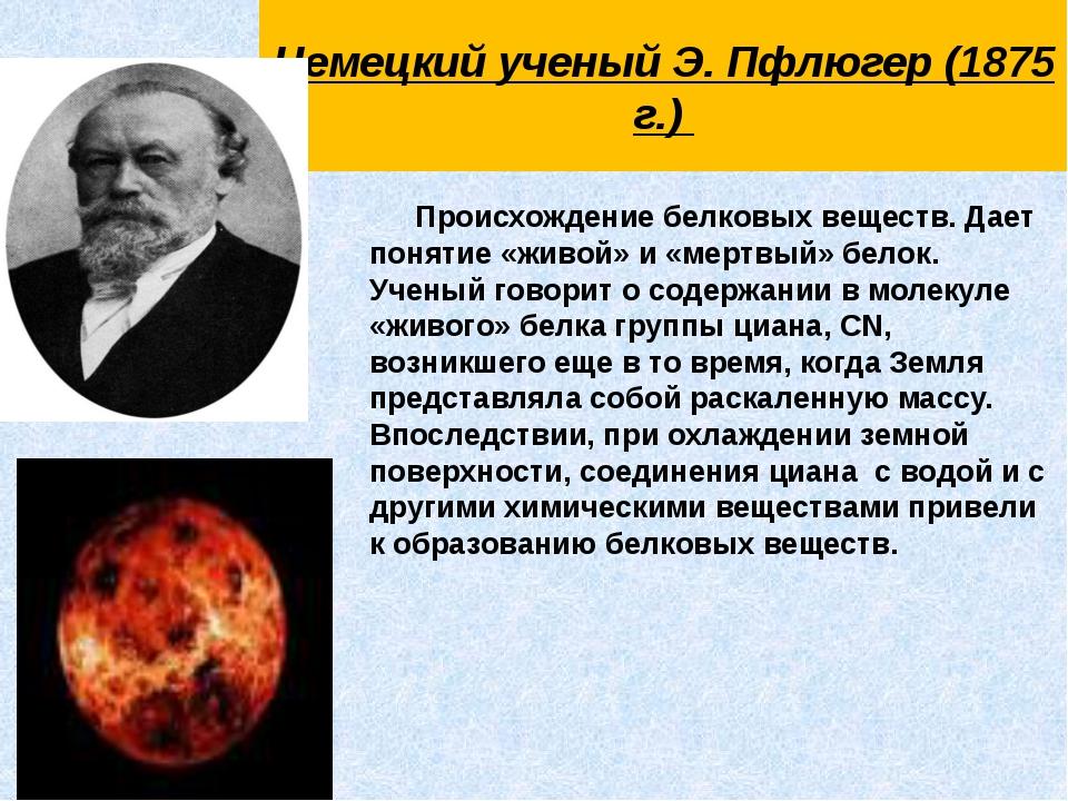 Немецкий ученый Э. Пфлюгер (1875 г.)  Происхождение белковых веществ. Дает...