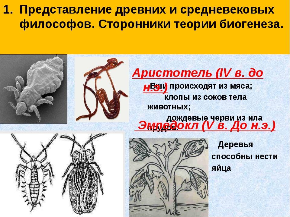 Представление древних и средневековых философов. Сторонники теории биогенеза....