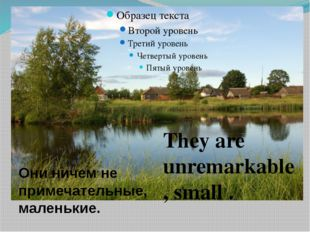 They are unremarkable , small . Они ничем не примечательные, маленькие.
