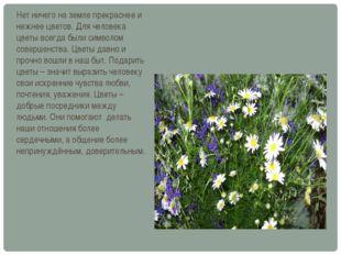 Нет ничего на земле прекраснее и нежнее цветов. Для человека цветы всегда был