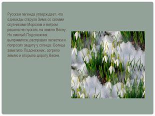 Русская легенда утверждает, что однажды старуха Зима со своими спутниками Мор