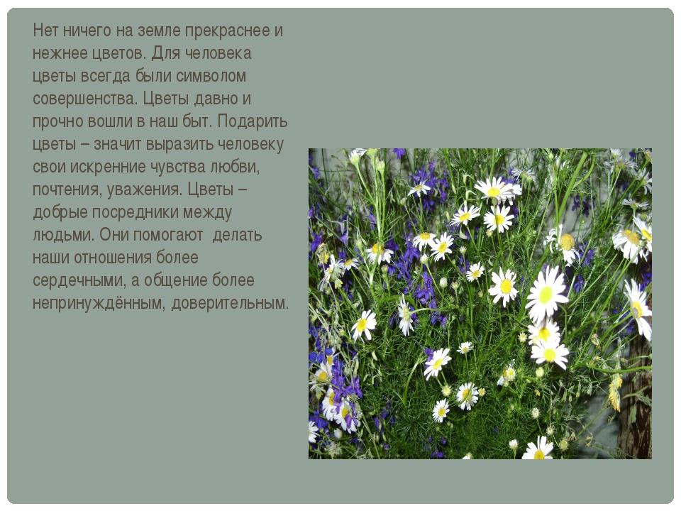Нет ничего на земле прекраснее и нежнее цветов. Для человека цветы всегда был...