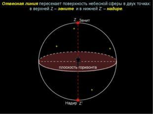 Отвесная линия пересекает поверхность небесной сферы в двух точках: в верхней
