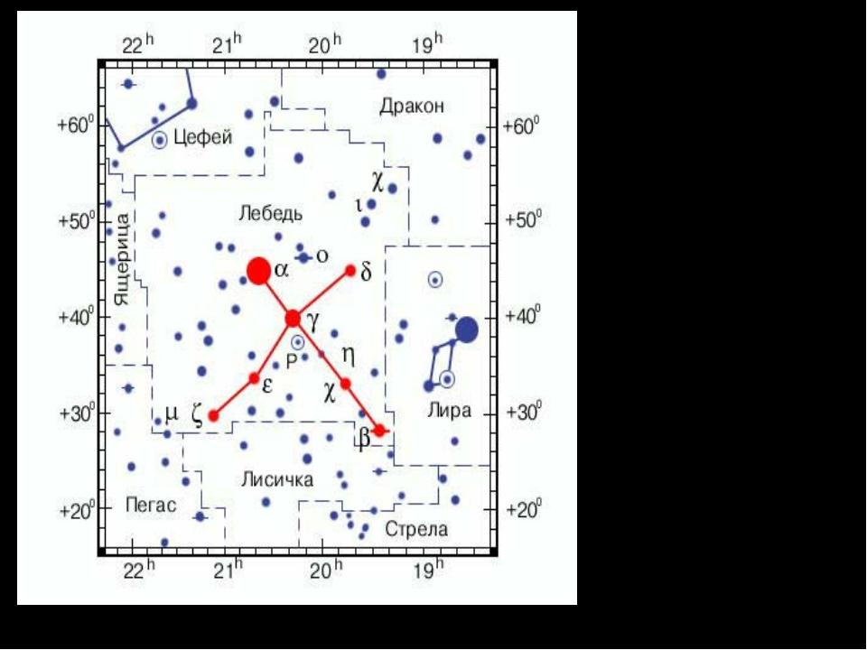 Созвездие Лебедя. Расположено в полосе Млечного Пути. Наиболее благоприятные...