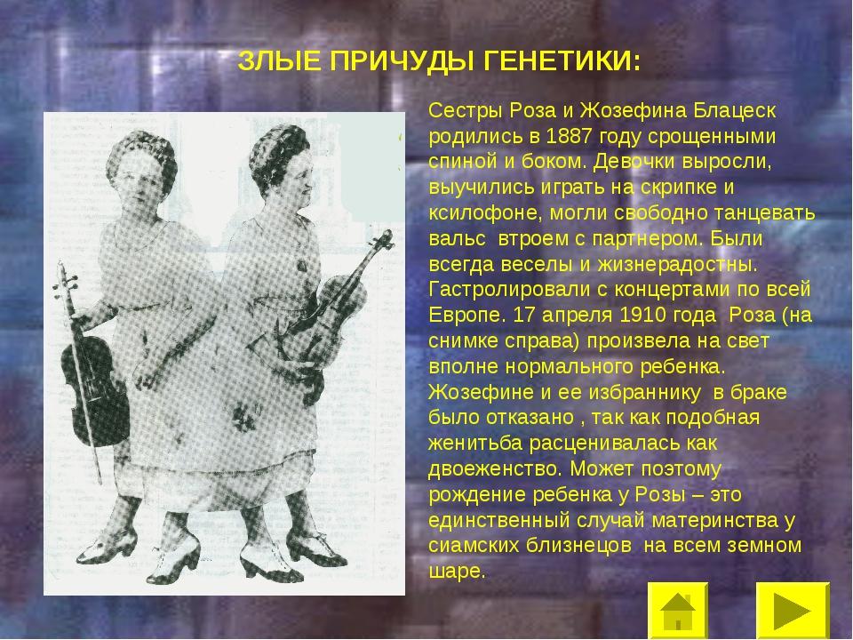 ЗЛЫЕ ПРИЧУДЫ ГЕНЕТИКИ: Сестры Роза и Жозефина Блацеск родились в 1887 году ср...