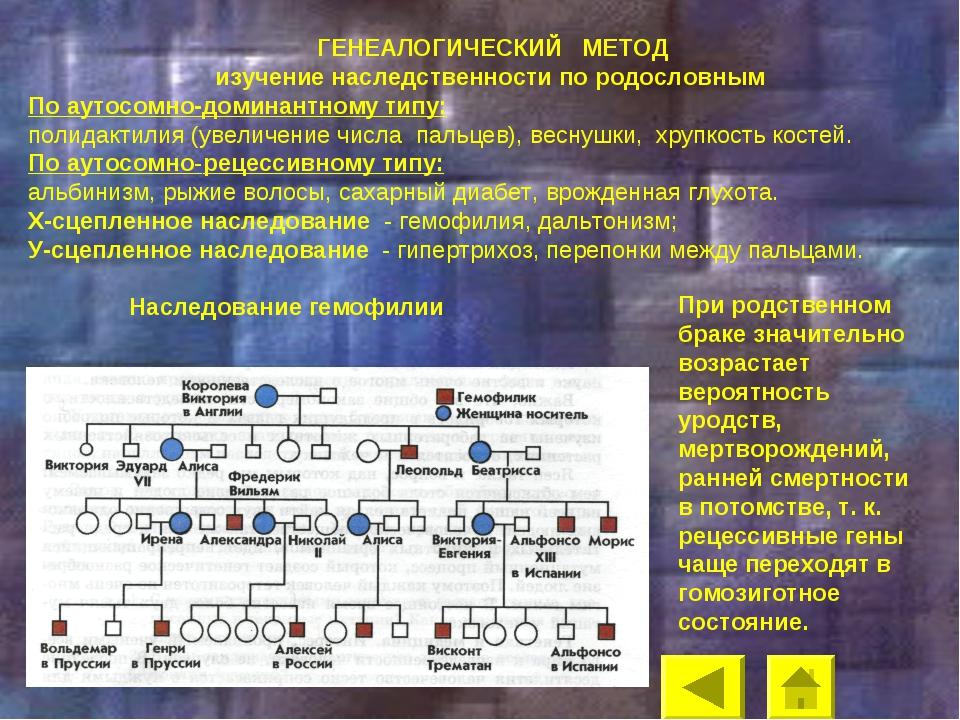 ГЕНЕАЛОГИЧЕСКИЙ МЕТОД изучение наследственности по родословным По аутосомно-...