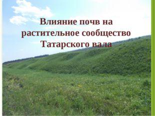 Влияние почв на растительное сообщество Татарского вала
