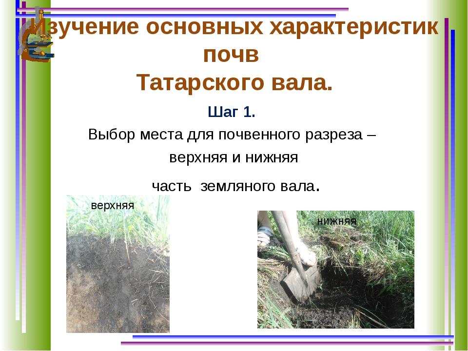 Изучение основных характеристик почв Татарского вала. Шаг 1. Выбор места для...