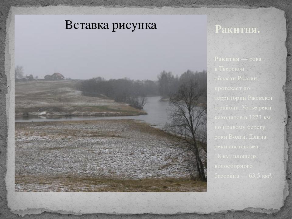 Ракитня. Ракитня— река вТверской областиРоссии, протекает по территорииРж...