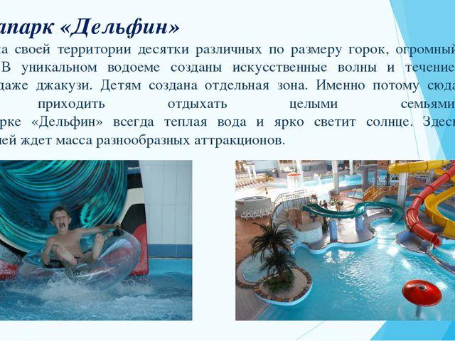 Аквапарк «Дельфин» соберет на своей территории десятки различных по размеру г...