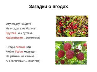 Загадки о ягодах  Эту ягодку найдете Не в саду, а на болоте. Круглая, как пу