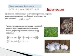 Уравнение, описывающее количество кроликов, скорость размножения которых тем