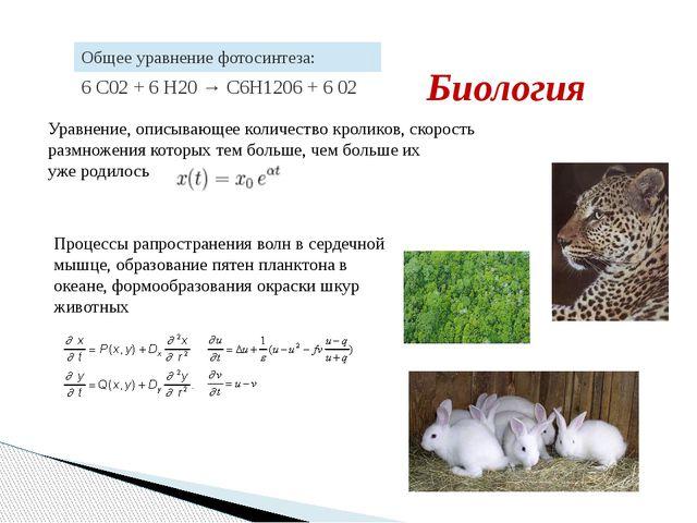 Уравнение, описывающее количество кроликов, скорость размножения которых тем...